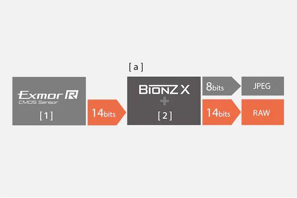 خروجی های مختلف در دوربین سونی A7 III